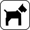 Pictogram - Hund